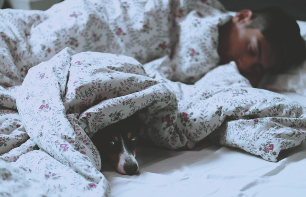 寒い朝にベッドから出るのがつらいイメージ