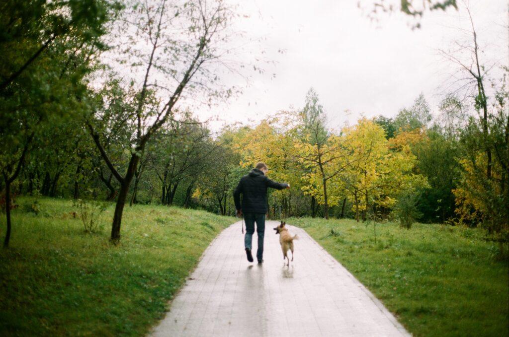 犬を散歩してウォーキングしているイメージ